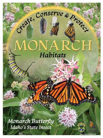 PollinatorPosterLowRes_400_533_80.jpg