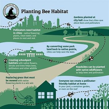 NWF-Beesponsible-Bee-Habitat.jpg