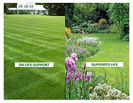 Lawn-Life-Support-Life-poster2.jpg