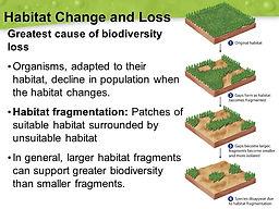 Habitat+Change+and+Loss.jpg