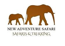 New Adventure Safaris