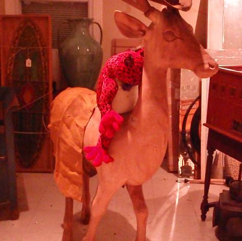 ANT ANIMAL - HORSE  (136).JPG