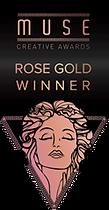 2017 MUSE Award