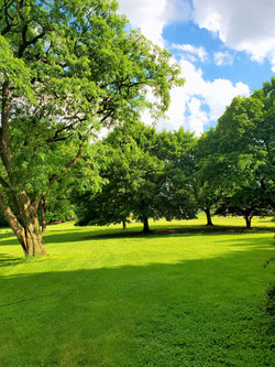 trainingarea3_edited.jpg