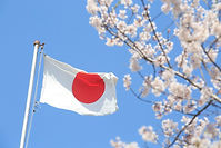 Japan-Flag-and-cherry-blossoms.jpg