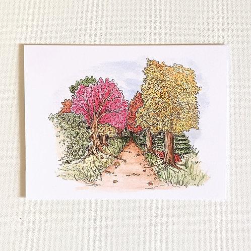 Fall Trees Card
