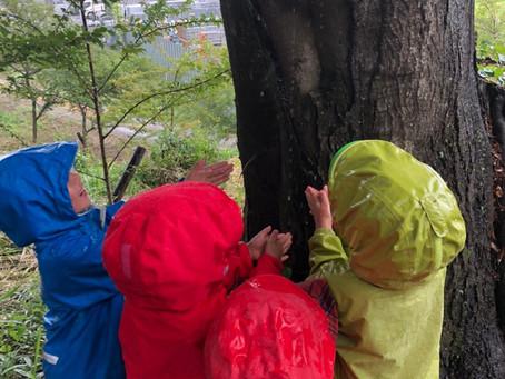 雨の日のおさんぽ