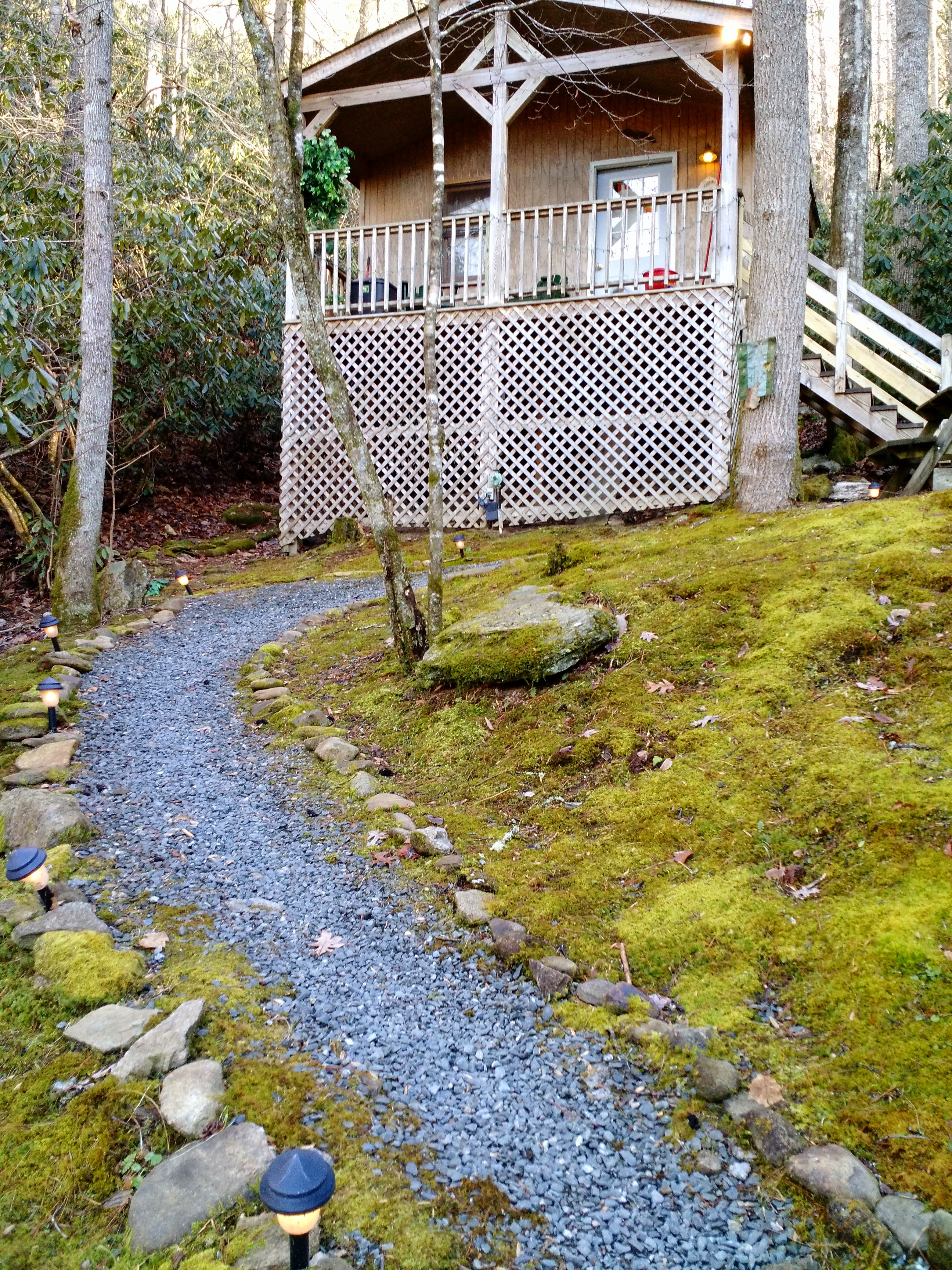 Pathway to cabin