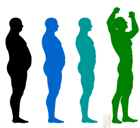 Weight Loss Progression.png