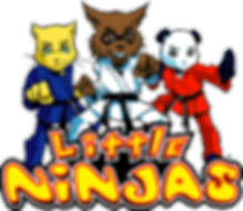 Littleton CO Martial Arts, The ROCK Martial Arts & Fitness, Little Ninja Logo, taekwondo for ages 5-6
