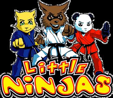Littleton CO Martial Arts, The ROCK Martial Arts & Fitness, Little Ninja Logo, taekwondo for ages 5-6