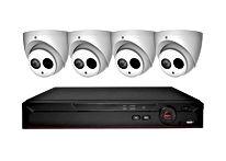 4 Eye Ball Style Cameras - 4 MP - Abstract Enterprises Security.jpg