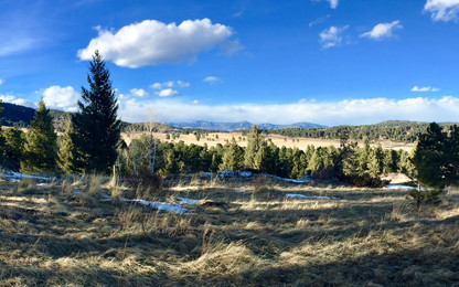 Elk Meadow Park