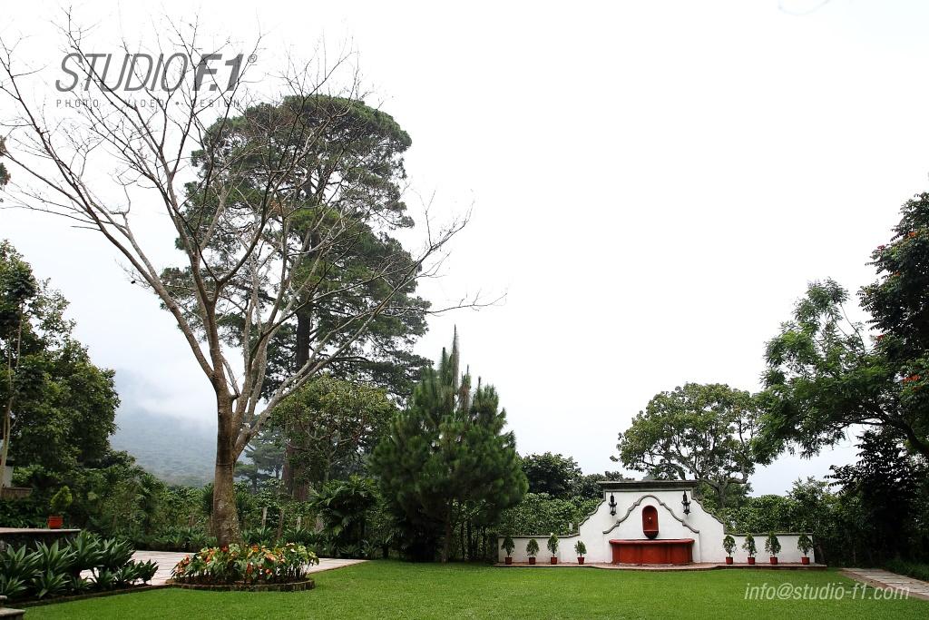 jardin pinar
