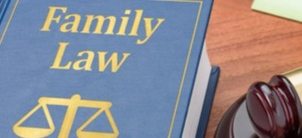 What is Japanese Family Court's criteria in granting sigle child custody.