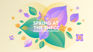 WEBSITE_COVER_SPRING-english.png