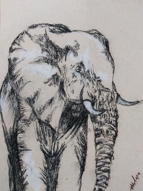 Small Print - Elephant