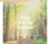 The Path Home 1.png