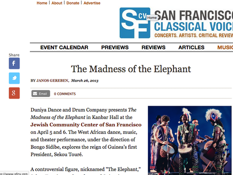 The Madness of the Elephant