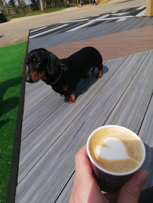 Coffee Shop 7.jpg