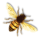 6-2-bee-png-5.png