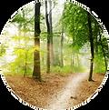 psychotherapie_darmstadt-trance_und_hypnose.png