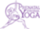 transparent PVYTT logo.png