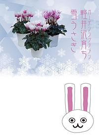 雪うさぎ POP.jpg