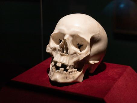 Un crâne de marbre caché à la vue dans un château allemand a été fait par Bernini pour le pape.