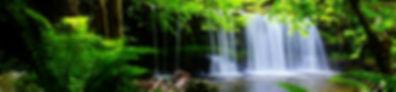 nature5.jpg