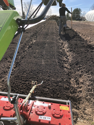 Prepping beds with a Grillo G-110 and power harrow, as well as with a broadfork.