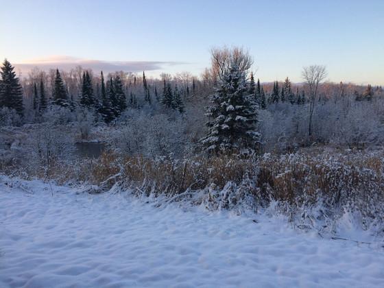 ThePond_Winter.jpg