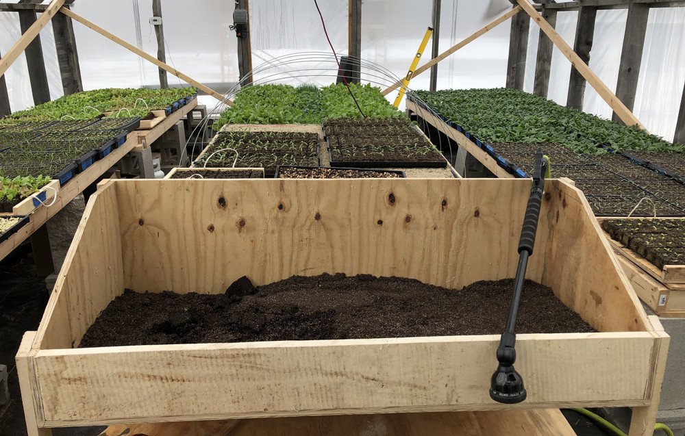 UProoted Farm's seed-starting greenhouse in April 2019.