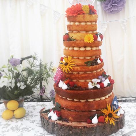 Large 4 tier naked woodland cake