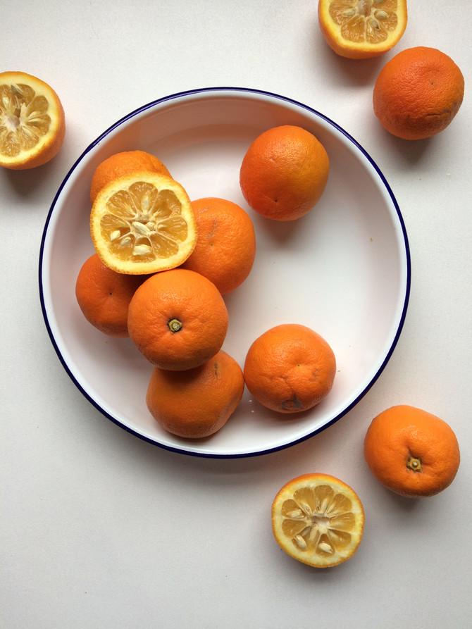 Seville Orange Marmalade Season