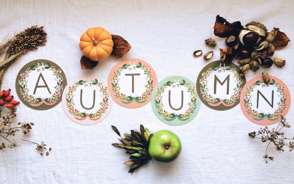 Autumn - Sky Meadow Bakery blog