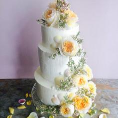 Seashell rose cake