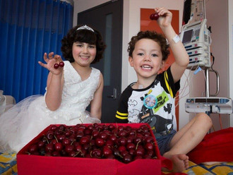 Camp Quality's Cherry Ball is set to reach a milestone this weekend