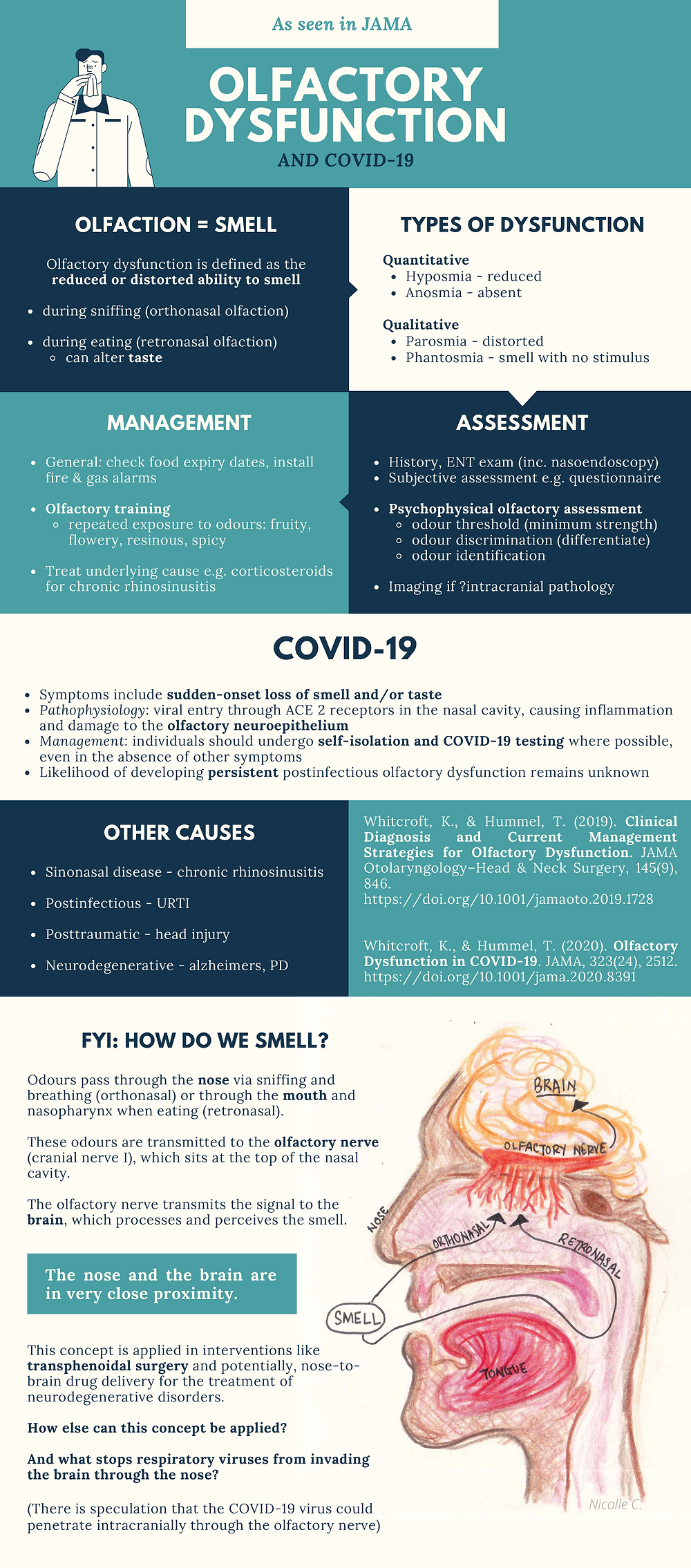 olfactory dysfunction, covid-19, anosmia, olfactory dysfunction in covid-19, medical students, applicants, medicine, research