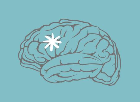 Neuro | Stroke: An Outline