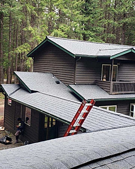 Residential Roof - Shingle Roof