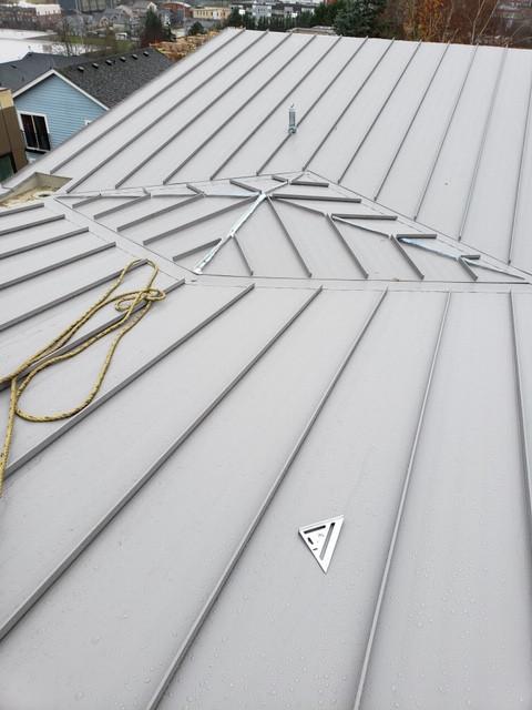 Metal Roof - Metal Panels