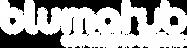 Logotipo_Bluma Hub_Branco-02.png
