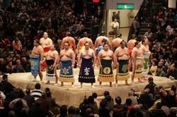 Places aux tournois de sumo