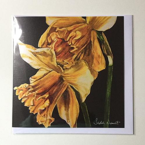 Daffodils SN46