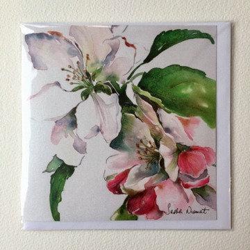 Apple Blossom SN17