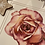 Thumbnail: Pink rose with mount