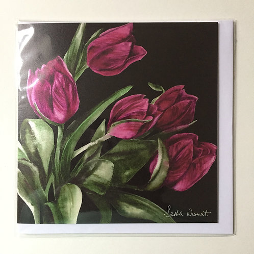Tulips SN50