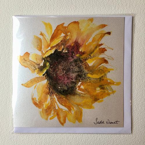 Sunflower SN16