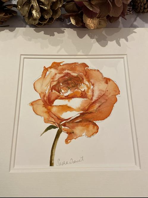 Orange Rose with mount